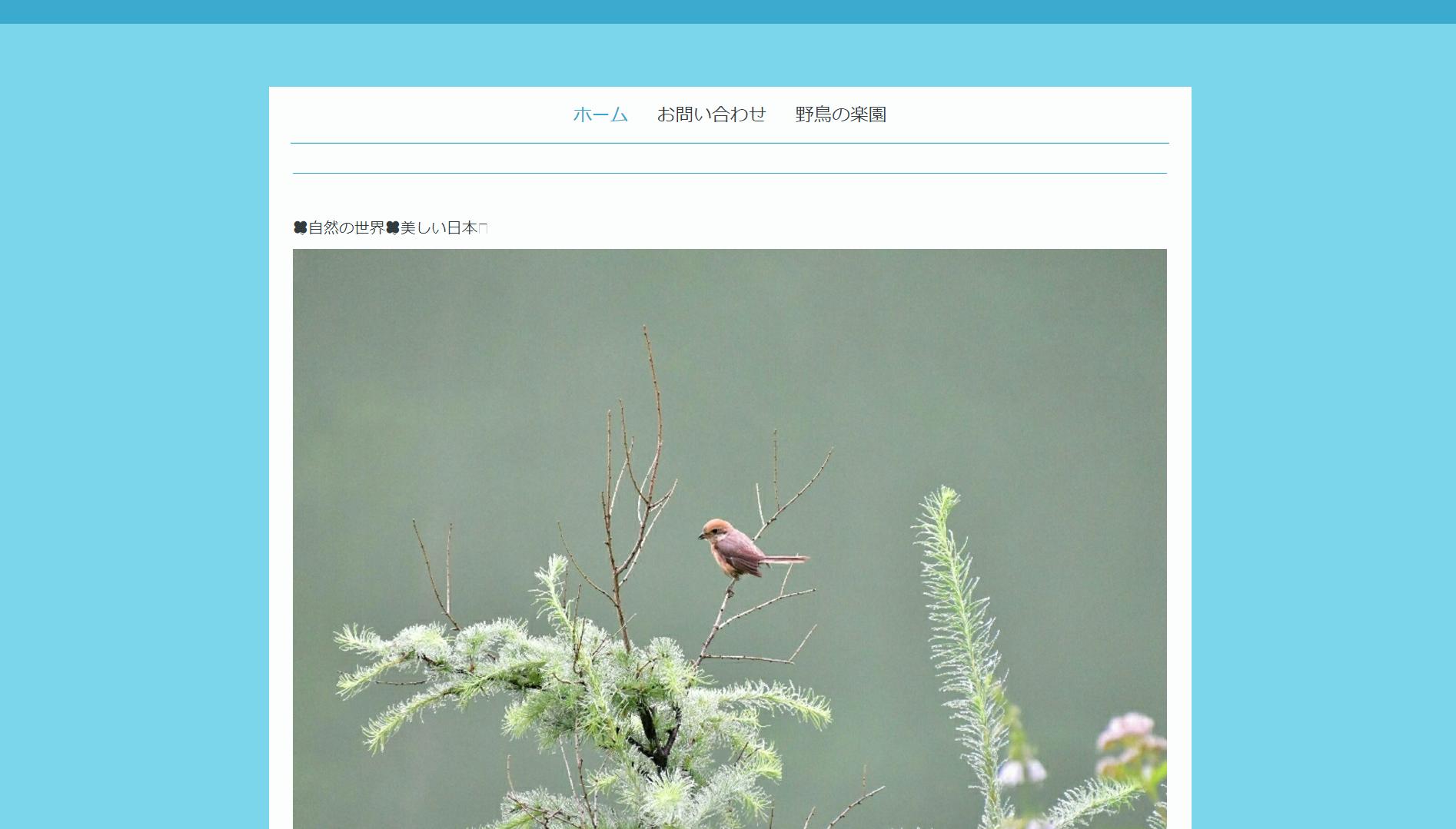 自然の世界 美しい日本